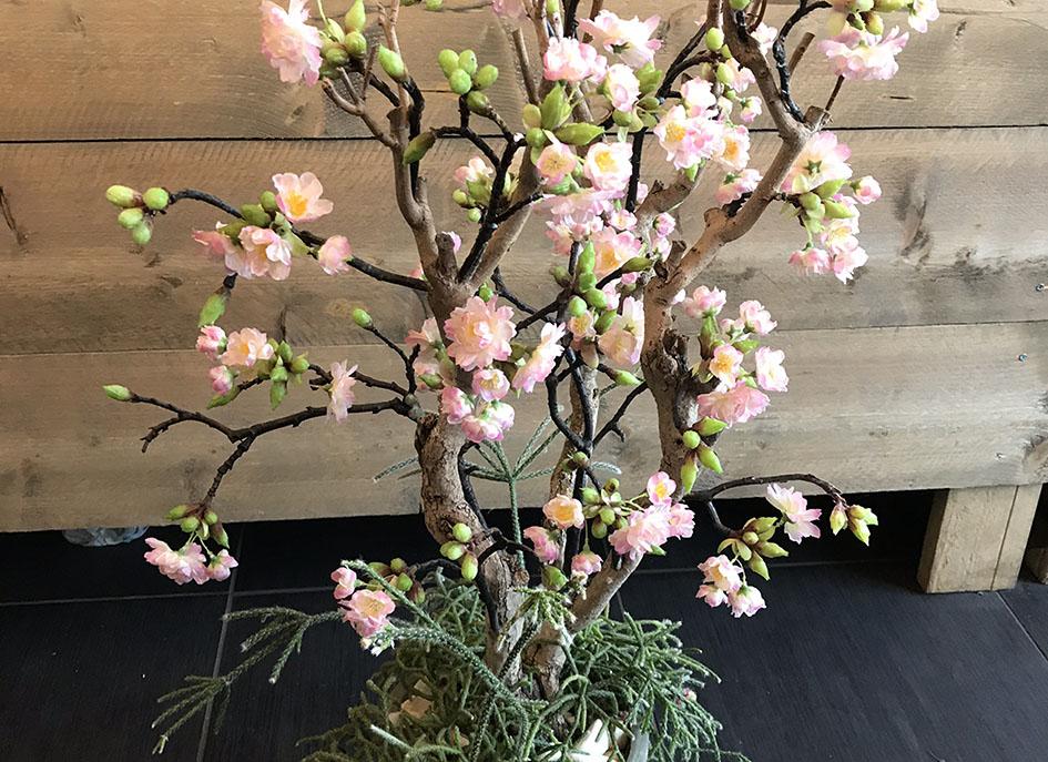 Bloesemboompje roze